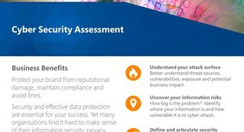 Cyber Security Assessment Flyer 2019