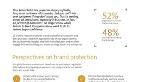 Brand Protection Fact Sheet