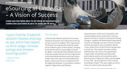 E-sourcing at Linde Gas – a vision of success