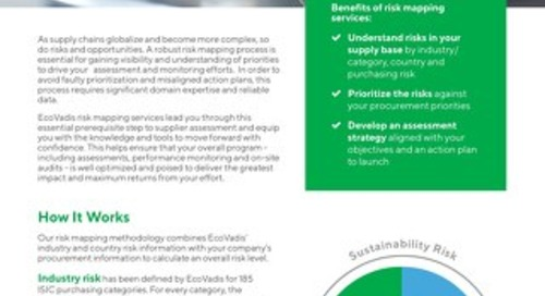 Risk Mapping Services Brochure