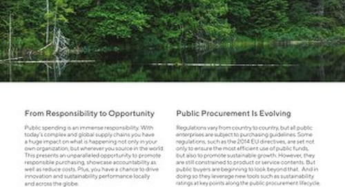 Public Procurement Flyer