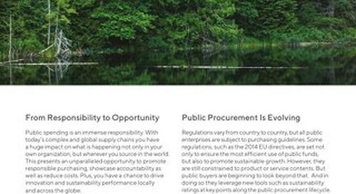 Public Procurement Flyer