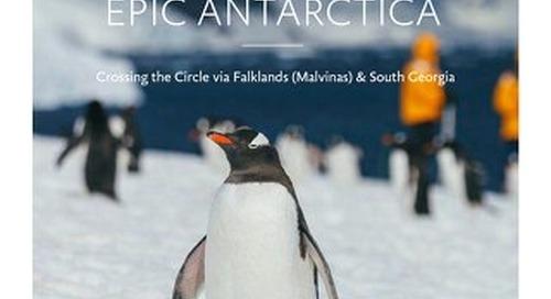 Epic Antarctica: Crossing the Circle via Falklands (Malvinas) and South Georgia