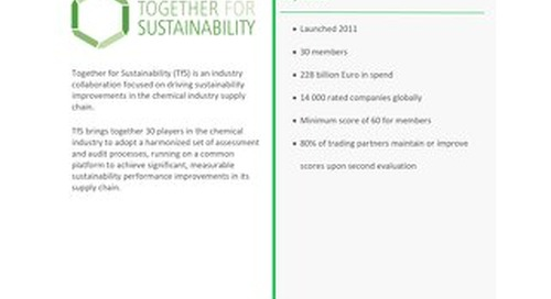 How 'Together for Sustainability' Drives Supply Chain Sustainability in the Chemical Industry
