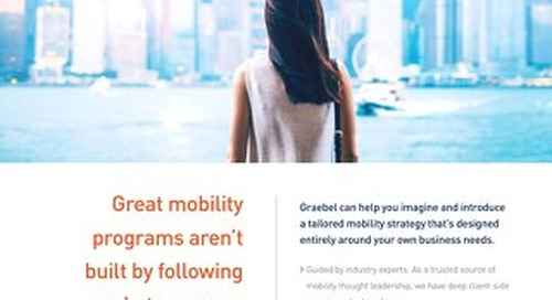 Graebel Mobility Strategy Services - Overview Sheet