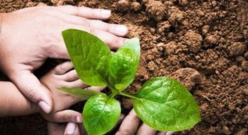 EcoVadis Annual CSR Report 2017