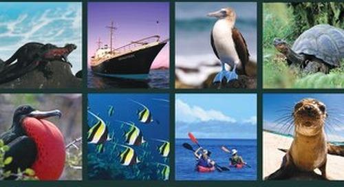 Galapagos 2020