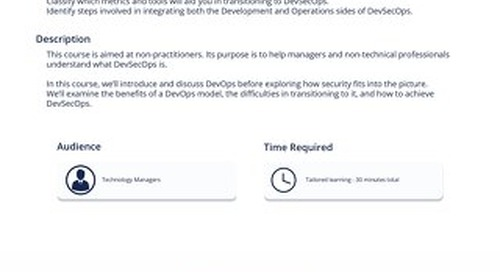 DVP 101 DevSecOps for Managers