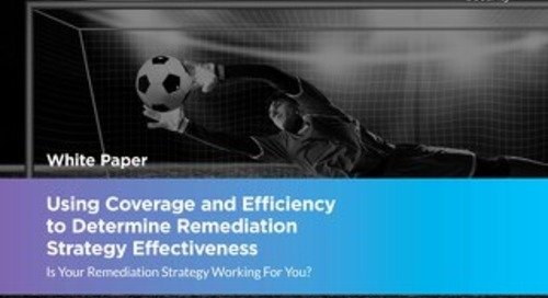 Using Coverage and Efficiency to Determine Remediation Strategy Effectiveness