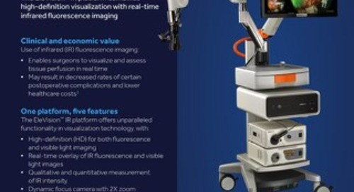 Information Sheet: Visionsense™ VS3 Iridium System