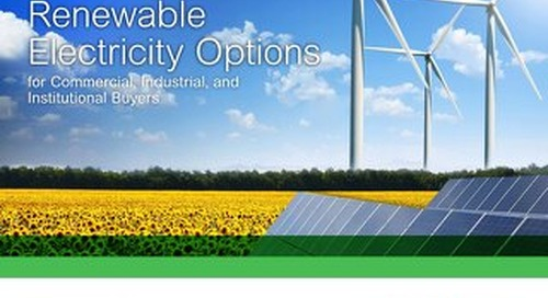 The Definitive Guide to Renewable Electricity
