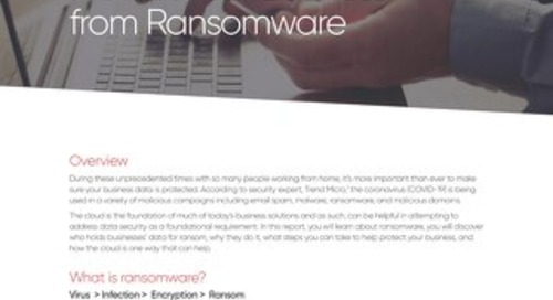 Whitepaper: Protect Business from Ransomware
