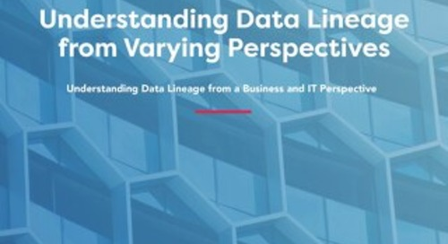 Understanding Data Lineage from Varying Perspectives