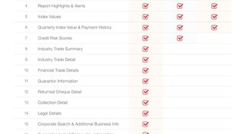 Business Credit Report View Comparison
