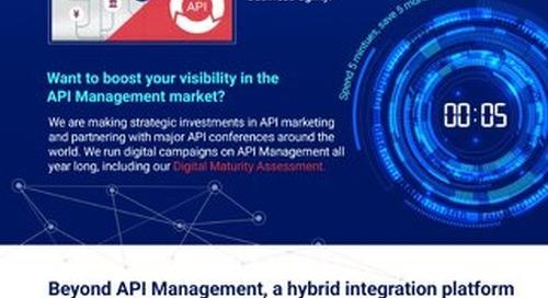 API Management: Do you have the right strategic partner?