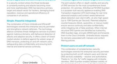 Efficient IP feature brief