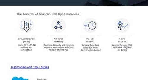 AWS Spot Instances