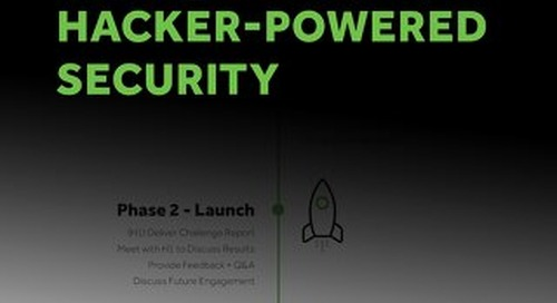 The Beginners' Guide to Hacker-Powered Security
