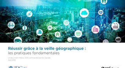 Réussir grâce à la veille géographique : les pratiques fondamentales