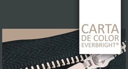 Diseño Catalogo Everbright 2019
