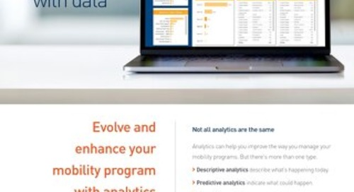 Graebel Analytics Overview