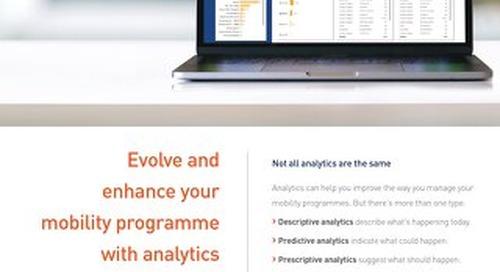 Graebel Analytics Overview_GB