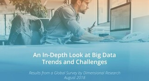Big Data Trends and Challenges Report