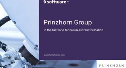 Prinzhorn aims for growth with webMethods.io B2B integration platform