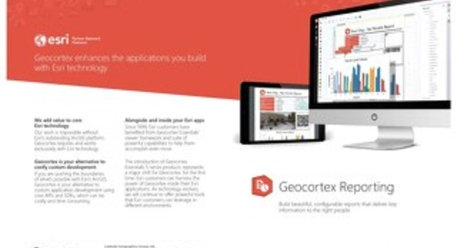 Geocortex Reporting