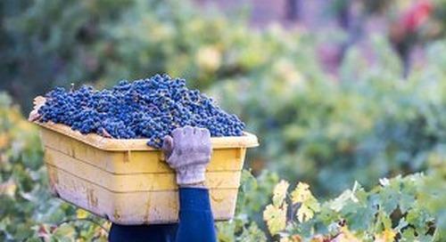 Signature Wines & Wineries of Coastal California Digital Book