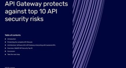How webMethods API Gateway protects against top 10 API security risks