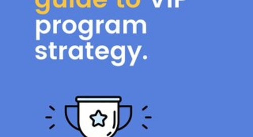 The Expert's Guide to VIP Program Strategy