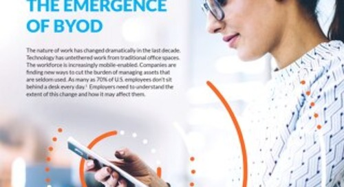 Trends in Mobile Work: The Emergence of BYOD