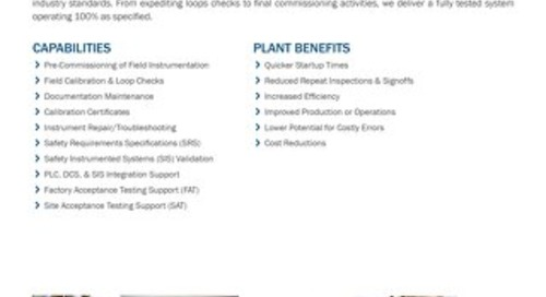 Instrumentation & Controls Integration Services