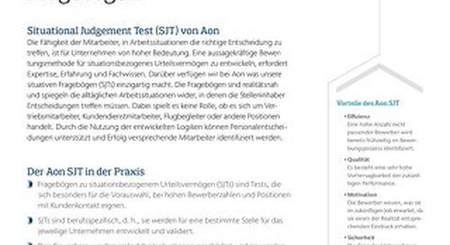 SJT Infoflyer