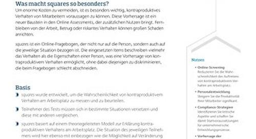 Integritätstest Infoflyer