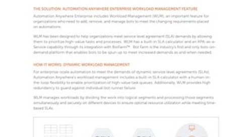 Automation Anywhere Workload Management