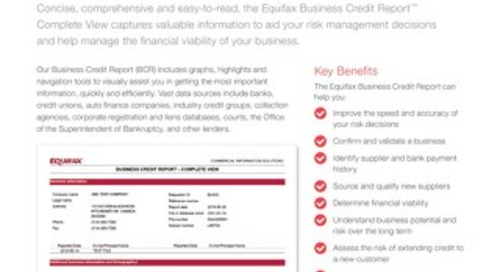 Equifax Business Credit Report Complete View