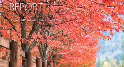 Quarterly Market Report - Q3 2019 South