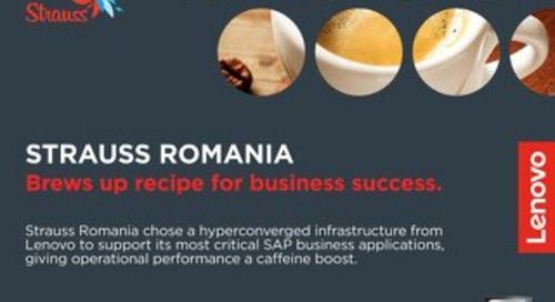 Case Study Strauss Romania