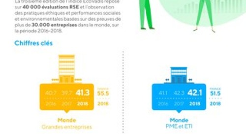 Infographie : Indice Performance / Risque EcoVadis 2019