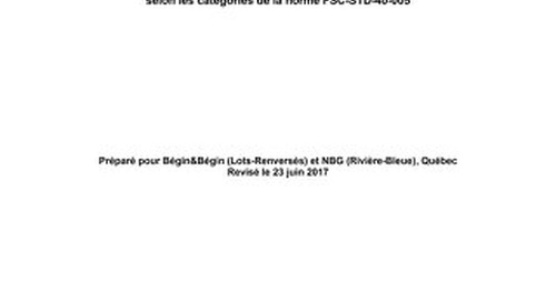 Groupe N.B.G. Inc. - Risk Assessment 2017 FR