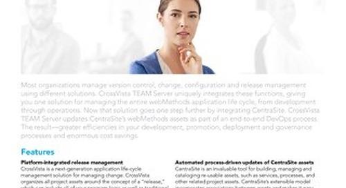 CrossVista TEAM Server for webMethods