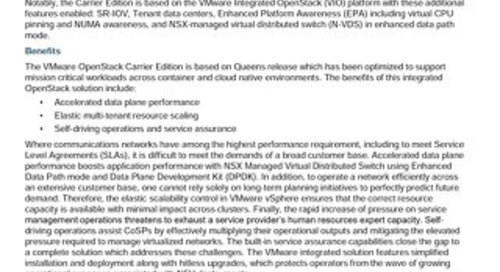 VMware on Intel Select Solutions for NFVi