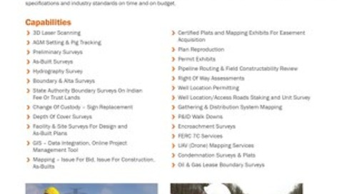 AFS - Survey & Mapping Services