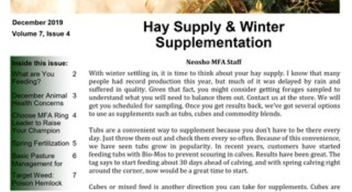 Southwest December 2019 Newsletter