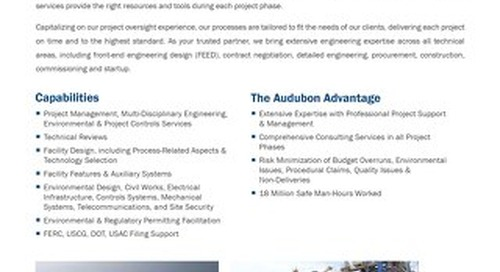 AE - Owners Engineering Services