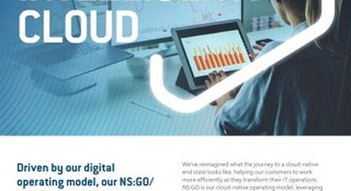 NS:GO - Intelligent Cloud - Flyer
