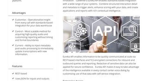 CallMiner API