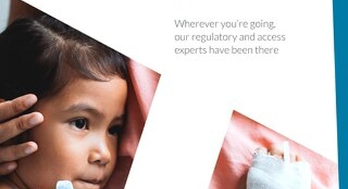 Regulatory & Access Consulting Overview Brochure